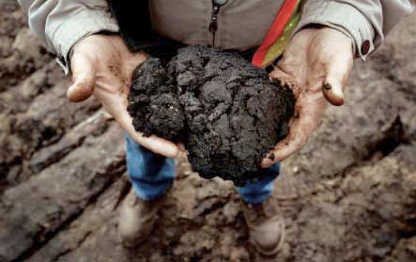 bitumen beacon energy news